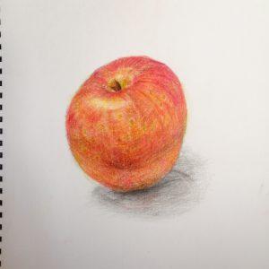 色鉛筆アート‗リンゴ