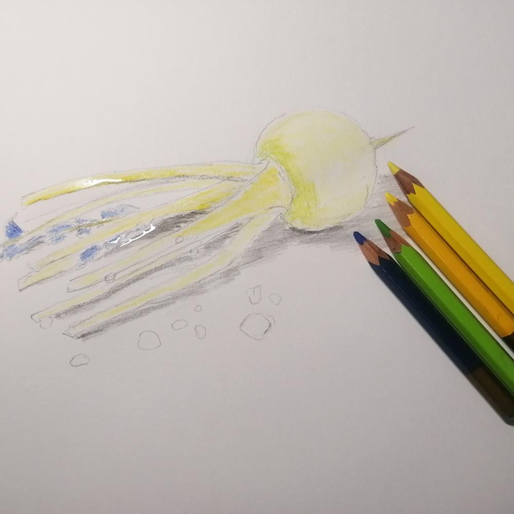 色鉛筆アート‗カブ下塗り