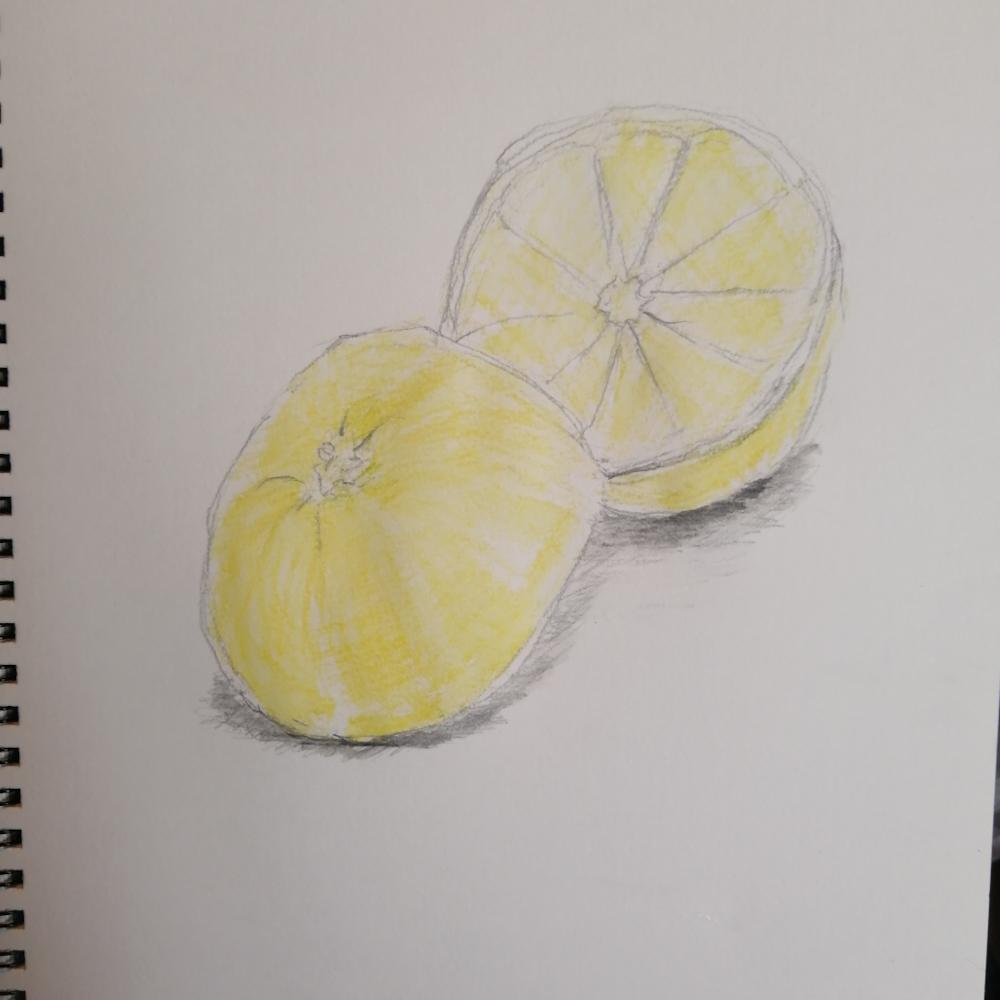 色鉛筆画下塗り